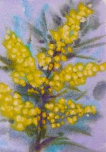 mimosa painting